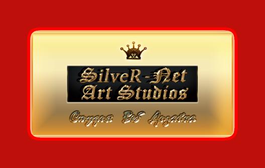 Веб-Студия Дизайна «SILVER-net Art Studios»